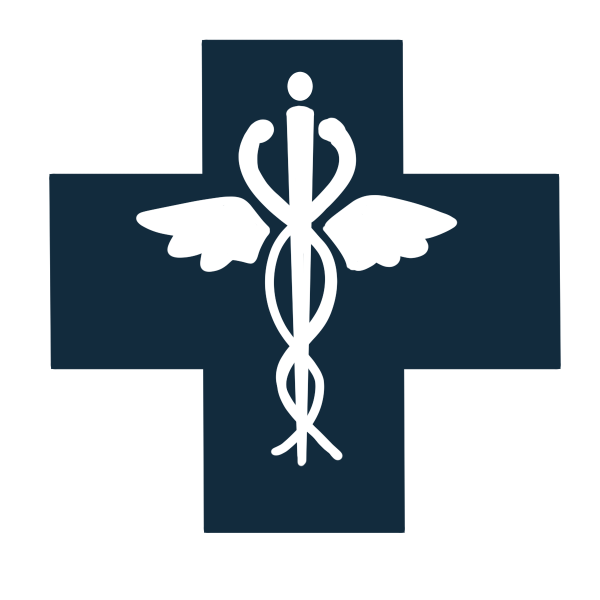 stylized illustration of the health care icon of two snakes wrapped around a staff with wings over the plus symbol used for medical care